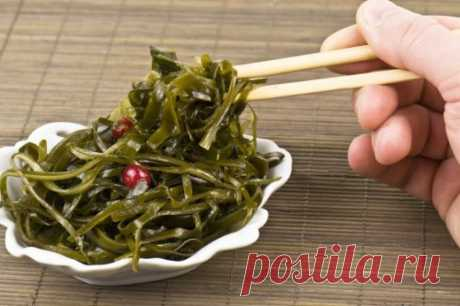 USEFUL PROPERTIES OF THE LAMINARIA AND OTHER SEAWEED....