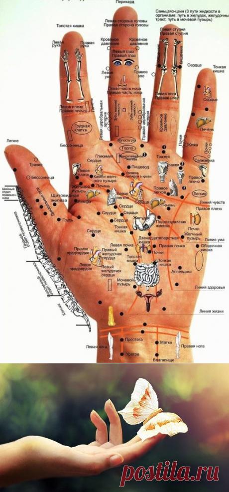 Как узнать состояние здоровья по рукам - Образованная Сова
