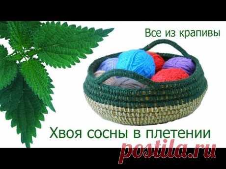 Хвоя сосны в плетении. Плетение из сосновых иголок. Все из крапивы.