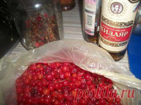 (+1) сообщ - «Калиновка». Настойка на коньяке с мёдом | Любимые рецепты