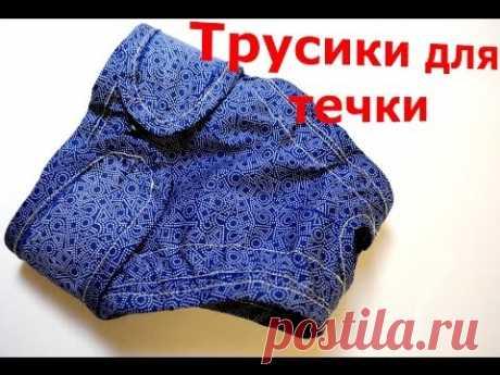 Трусы для течки шьем сами (выкройка) /Pattern Sew Dog Pants