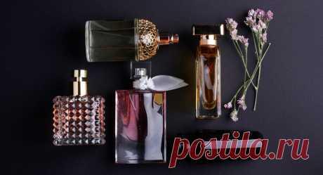 Правила хранения духов, или как хранить аромат 5-10 лет Благодаря специально подобранному разнообразию композиции, каждый парфюм влияет на настроение, самочувствие, мироощущение – это является своего рода ароматерапией, помогающей и окружающей на протяжении всего ...