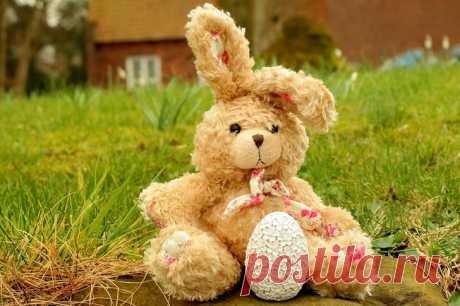 7-летняя дочь написала завещание: зайца — однокласснику Ване, набор кукол LOL — бабушке