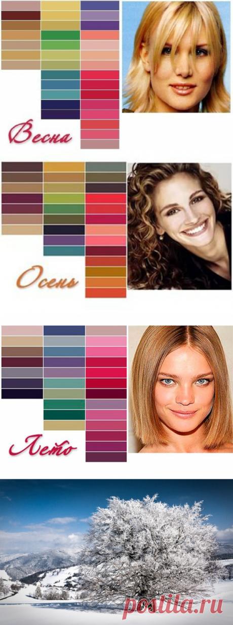 Основные цветотипы, или Каких оттенков стоит избегать – Ярмарка Мастеров