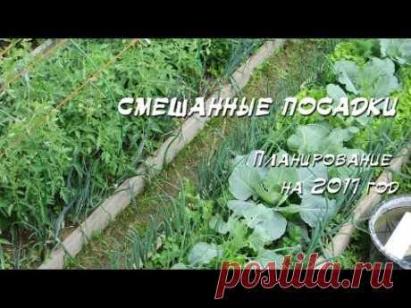 !!!  Планирование посадок на 2017 год (открытый грунт) - YouTube