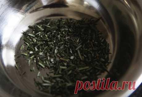 El tratamiento de antes de la siembra de las semillas – mobiliziruem las reservas escondidas | Ogorodnik | Ogorodnik.com
