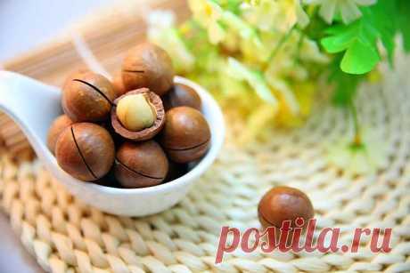 Макадамия— самый-самый орех: полезные свойства - Полезный журнал Good-Tips.PRO