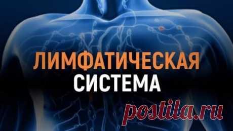 Лимфатическая гимнастика для очистки лимфы - Яндекс.Видео