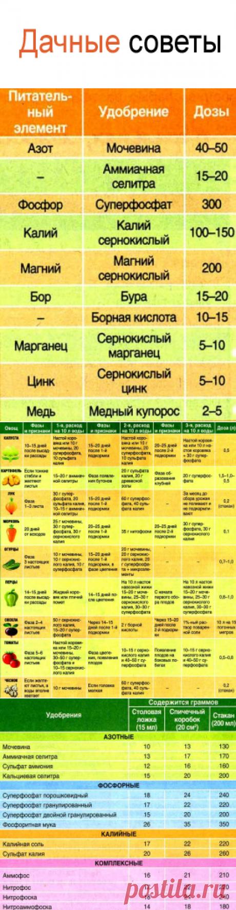 Как вносить удобрения, подкормки для овощей