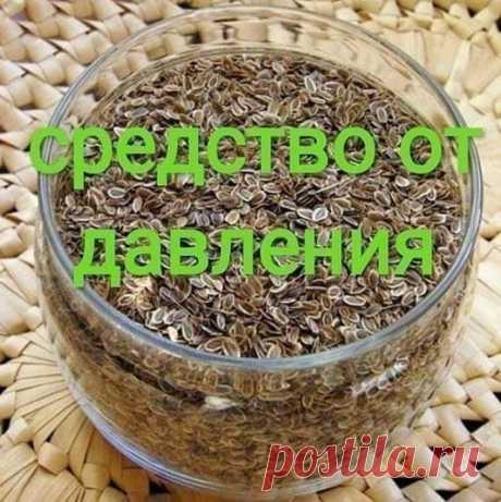 Чтобы забыть о давлении нужно взять горсть семян укропа.   Высокое давление придет в норму, исчезнут запоры, боли в желудке и мочевом пузыре, пройдет недержание мочи и кала, если в заварочный чайник насыпать столовую ложку с горкой семян укропа и залить их пол-литрами кипятка. Накрыть чайничек салфеткой или укутать полотенцем на 40 минут, чтобы семена хорошо запарились и отдали все ценные вещества в воду.   Полученное лекарство нужно пить прямо из носика чайника по 3 глотк...