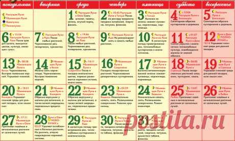 ВАЖНО: Посевной лунный календарь 2017 (март, апрель)