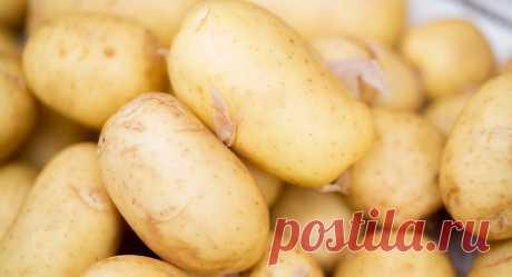 Картошку назвали причиной высокого давления - новости на Здоровье Mail.Ru