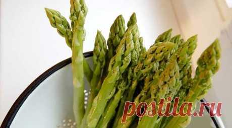Спаржа лекарственная: польза и вред для здоровья женщин, мужчин и детей. Применение при беременности, для лечения заболеваний, как приготовить суп, салат.