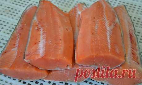 """Граавилохи или гравлакс: красная соленая рыбка от которой """"сходят с ума""""   Рекомендательная система Пульс Mail.ru"""
