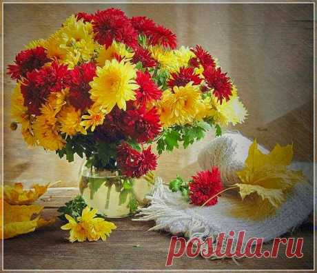 Картинки с осенними цветами (35 фото) ⭐ Забавник