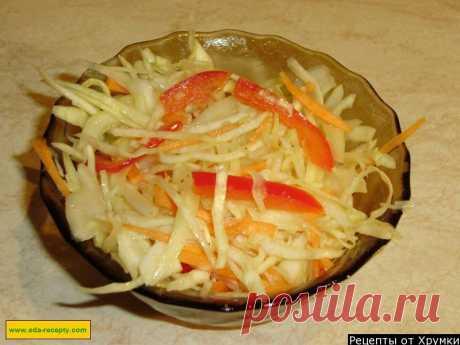 Салат из свежей капусты с морковью и уксусом рецепт с фото пошагово - 1000.menu