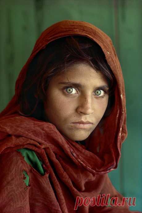 1. Стив МакКарри — один из самых известных и гениальных фотографов современности. Многие любители фотоискусства знают его как автора одного-единственного снимка афганской девочки.  | 10 всемирно известных фотографов-портретистов • НОВОСТИ В ФОТОГРАФИЯХ