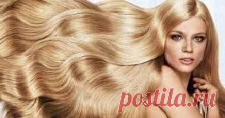 """ТОП ПРОЦЕДУР по уходу за волосами от ЗЛАТОВЛАСКИ.                     Приветствую Всех читателей моего сайта о красоте и здоровье волос  """"ЗЛАТОВЛАСКА"""" !       В этом блоге я  буду рас..."""