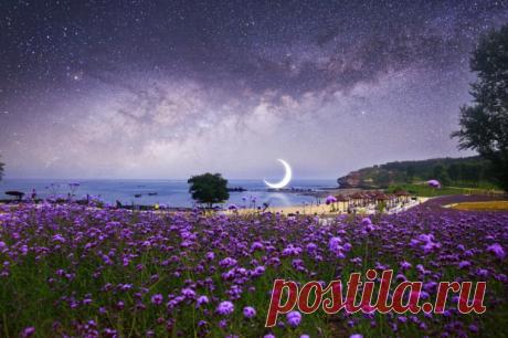 Лунный календарь на июнь 2020: три сильных дня для осуществления желаний