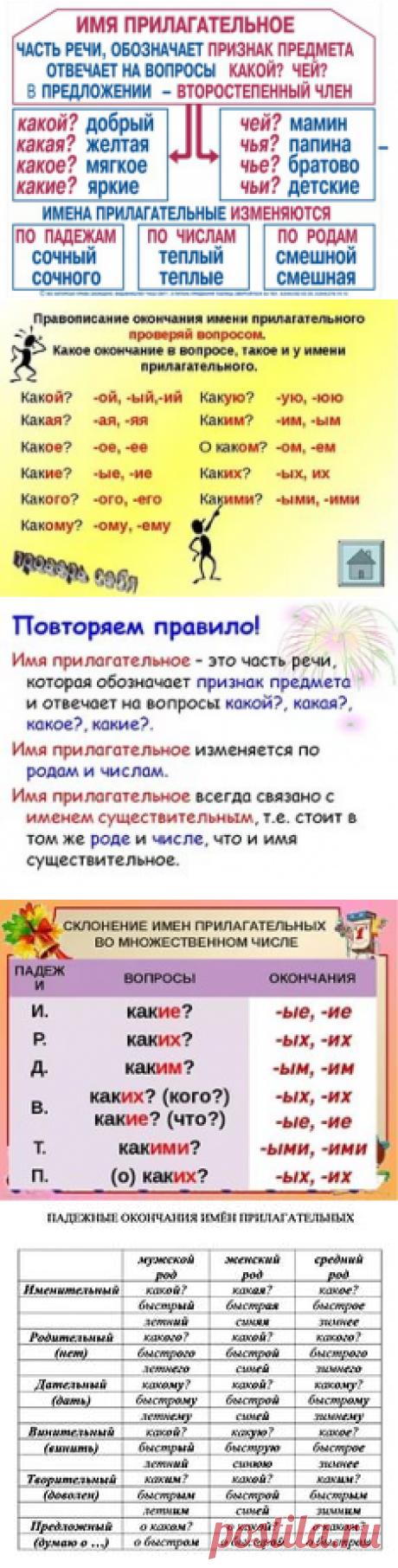 на какие вопросы отвечает имя прилагательное по падежам: 9 тыс изображений найдено в Яндекс.Картинках