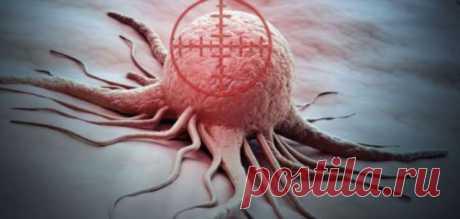 Учёные планируют использовать вирусы при лечении онкологии | Краше Всех