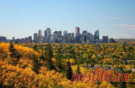 Канадский Калгари могут переименовать из-за претензий коренных жителей страны | В мире