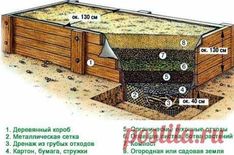 Как сделать грядки под клубнику: примеры и советы по обустройству - Огород, сад, балкон - медиаплатформа МирТесен