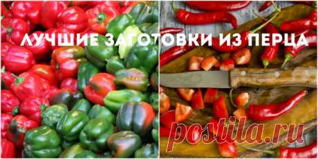 Pepper for the winter: the best recipes of preparations for the winter + VIDEO