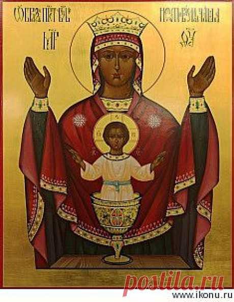 Икона Божьей Матери Неупиваемая Чаша: чудотворные списки, молитва, значение, купить или заказать икону - Ikonu.Ru