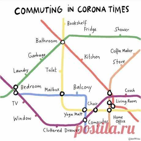 "В чем отличия между ""to commute"", ""to drive"", ""to ride"", ""to travel"" и ""to go""? | Английский язык | Start2Study | Яндекс Дзен"