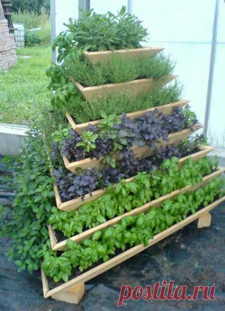 Экономим место для выращивания растений | Вишневое утро | Яндекс Дзен