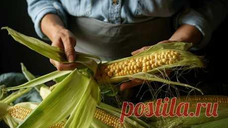 Почему человеческое тело не переваривает кукурузу? Состав и свойства кукурузы. Переваривается ли злак и как влияет на организм. Использование в лечебных целях. Польза и вред неперевариваемых элементов.