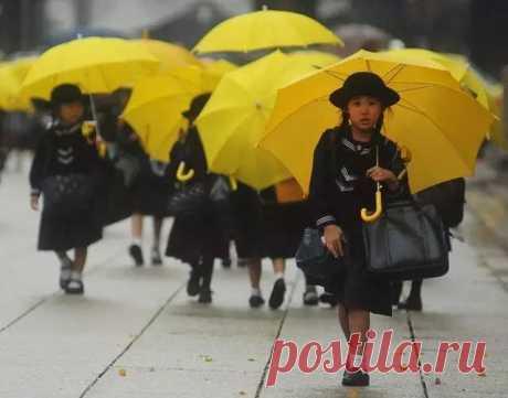 Школы в Японии настолько шокируют, чтобы обучать детей - COCO01