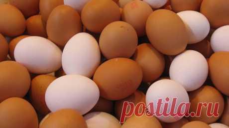 КОРИЧНЕВЫЕ И БЕЛЫЕ ЯЙЦА: В ЧЕМ РАЗНИЦА? - Женский Журнал Существует немало мифов, что куриные яйца с темной скорлупой полезнее и натуральнее, чем белые. А в некоторых магазинах они и стоят на порядок дороже. Мы расскажем, в чем причина различий и стоит ли переплачивать за цвет. На самом деле цвет скорлупы не зависит от рациона или возраста кур. Ответ предельно прост: всему виной порода и, …