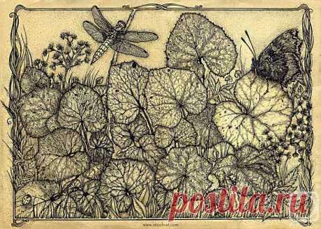 «Лист первый» картина Марченко Натальи (бумага, ручка) — купить на ArtNow.ru
