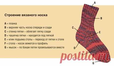 Учебный курс вязания носков - схема вязания спицами с описанием на Verena.ru