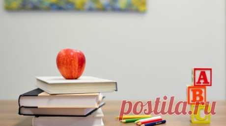 Учеба в школе требует сосредоточенности, выносливости, внимательности и терпения. Чтобы выдержать нагрузку и не потерять мотивацию, нужно правильно распределять ресурсы, уделять внимание спорту и сну, а также следить за эмоциональным состоянием. Какую роль во всем этом можете сыграть вы как родитель? Составили краткую выжимку советов из книг современных психологов и педагогов.