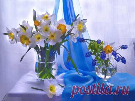 Натюрморты Первый день весны