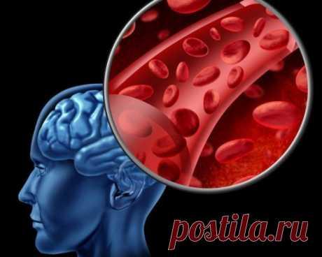 Народные средства для улучшения мозгового кровообращения Гипертония и атеросклероз — две основные причины, приводящие к нарушению мозгового кровообращения.Именно из-за них развивается паралич, падает зрение, теряется координация, нарушается движение, возникает инсульт. Хронические сосудистые заболевания мозга называются дисциркуляторной энцефалопатией.Ее симптомы развиваются медленно и не всегда заметны не только окружающим. Часто и сам больной не придает им особого значения. Подумаешь, стал за