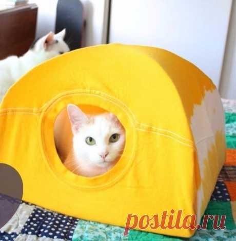 Делаем кошкин дом за 15 минут из старой футболки