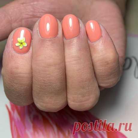 🔥🔥🔥 Instagram post by @vilen_nails | Снятие старого покрытия,комбинированный маникюр.покрытие гель-лаком. #маникюр #ногти #manicure #nogti #nails | 🔥 WAPINSTA