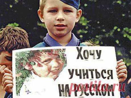 Первая победа Юго-востока и Крыма | Новости, события, факты