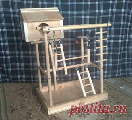 Игровая площадка для попугаев. Автор Troodi на pikabu #DIY_Идеи #идея #площадка #дерево #попугай #мастер