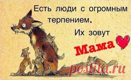(6) Наргиза Мамаджанова поделилась фото Веселая... - Наргиза Мамаджанова