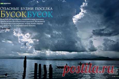 Опасные будни Бусокбусока | Geo - Непознанный мир: Земля