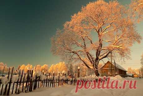 В деревне вечереет... Питерская губерния.. Photographer www.klimofoto.ru