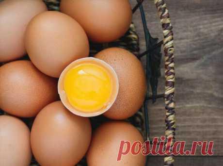 Как правильно выбирать яйца: полезные советы и интересные факты | Люблю Себя