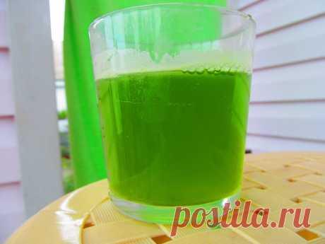 Напиток из зеленого чая и ростков пшеницы, способствующий нормализации сахара в крови - Быть здоровой
