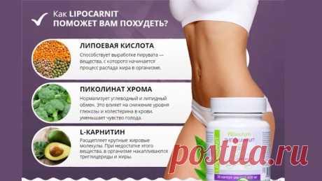 Уменьши навсегда массу тела за 1 месяц с Lipocarnit! Продукт является официальным БАДом, имеются все необходимые документы для прохождение модерации в контекстной рекламе и myTarget. В комплексном действии LIPOCARNIT эффективно уменьшает количество жировых отложений, способствует стабильному снижению веса до оптимальных пропорций в течение полугода после месячного курса препаратом. LIPOCARNIT избавляет от лишнего веса, нормализует белковый и жировой обмен, стабилизирует уровень