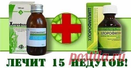 «Хлорофиллипт»: копеечное средство, которое лечит 15 болезней  — это натуральный противомикробный и противовоспалительный препарат. В его состав входят хлорофилл (растительный пигмент, придающий «Хлорофиллипту» характерный зелёный цвет) и эвкалипт (в виде экстракта листьев).  Раствор «Хлорофиллипт» стоит дёшево (около 30 грн., то есть чуть больше $1), но при этом имеет множество полезных применений. Раствор бывает спиртовым и масляным.